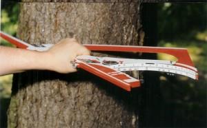 Doppel-Treemeter in Arbeitsstellung